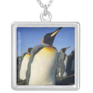 キングペンギン、(コウテイペンギン属のpatagonicus)、2 シルバープレートネックレス