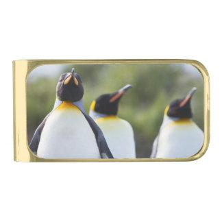 キングペンギン ゴールド マネークリップ