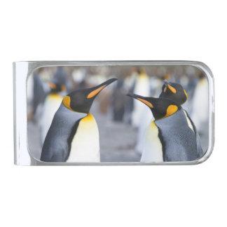 キングペンギン 銀色 マネークリップ