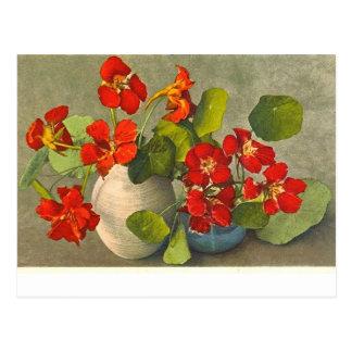 キンレンカの花束のヴィンテージの郵便はがき ポストカード