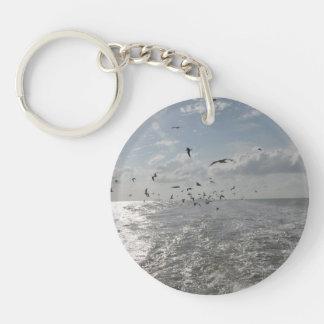 キーホルダー-鳥/カリブ キーホルダー