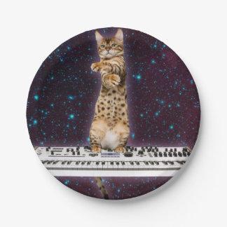 キーボード猫-おもしろいな猫-猫好き ペーパープレート