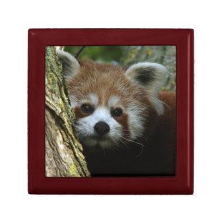 ギフト用の箱-レッサーパンダ ギフトボックス