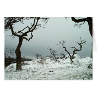 ギャリーのカシ草原の雪 グリーティングカード