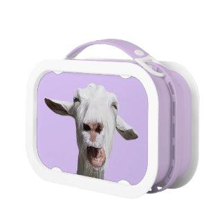 ギャリーヤギのランチボックス ランチボックス