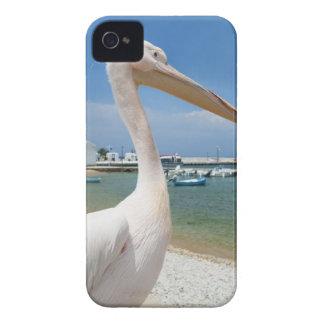 ギリシャのキクラデス諸島の島、Mykonosのペリカン Case-Mate iPhone 4 ケース