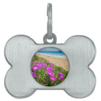 ギリシャの海岸のピンクのつらら植物 ペットネームタグ