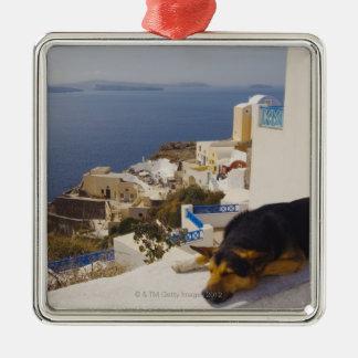 ギリシャのSantoriniの島、Oia都市、犬の睡眠 メタルオーナメント