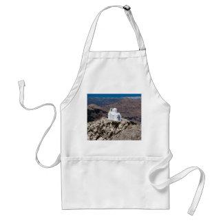 ギリシャ山の孤独な教会 スタンダードエプロン