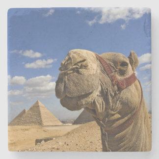ギーザ、エジプトのピラミッドの前のラクダ、 ストーンコースター