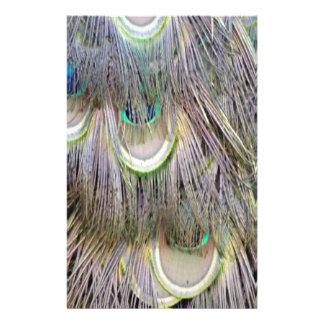 クジャクは色を紛砕する大きい目に羽をつけます 便箋