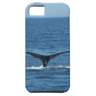 クジラの尾iPhoneの場合 iPhone SE/5/5s ケース