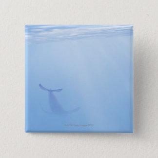 クジラの水中眺め 5.1CM 正方形バッジ