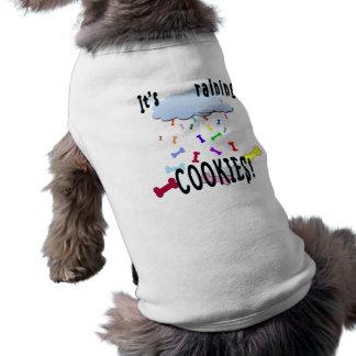 クッキーを雨が降っています! ペット服