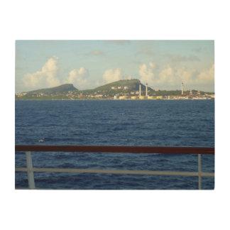 クラサオ島の海岸線 ウッドウォールアート