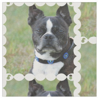 クラシックなボストンテリア犬 ファブリック