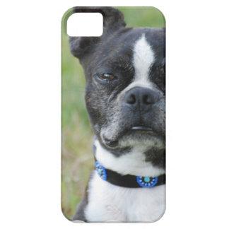 クラシックなボストンテリア犬 iPhone SE/5/5s ケース
