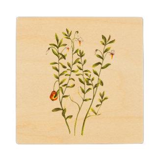 クランベリーの植物のヴィンテージの絵 ウッドコースター
