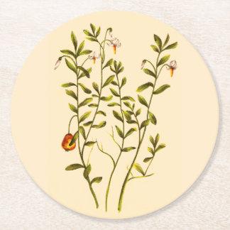 クランベリーの植物のヴィンテージの絵 ラウンドペーパーコースター
