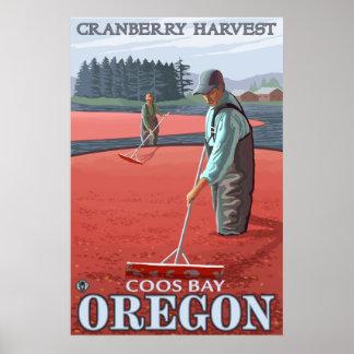 クランベリーの沼地の収穫-鳴き声湾、オレゴン ポスター