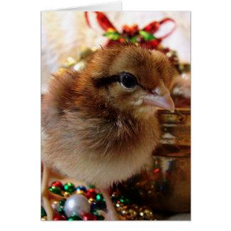 クリスマスのひよこ3 カード