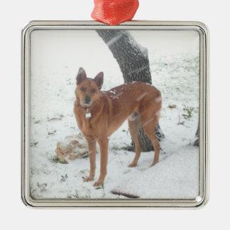 クリスマスのコレクションペットか家族写真 メタルオーナメント