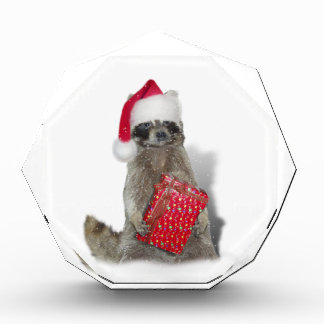 クリスマスのサンタのアライグマの強盗 表彰盾