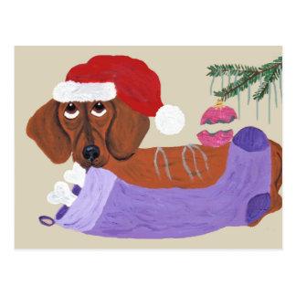 クリスマスのストッキングを持つダックスフント ポストカード