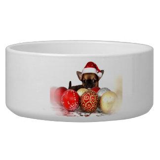 クリスマスのチワワの小犬ボール