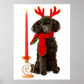 クリスマスのトナカイとして服を着る黒いトイプードル犬 ポスター