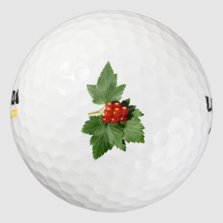 クリスマスのヒイラギの小枝 ゴルフボール