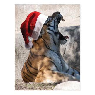 クリスマスのベンガルトラ ポストカード