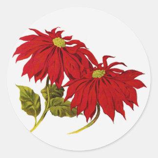 クリスマスのポインセチアの花 ラウンドシール
