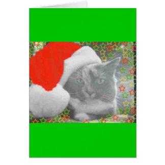 クリスマスのモーリー カード