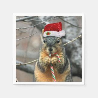 クリスマスのリス スタンダードカクテルナプキン
