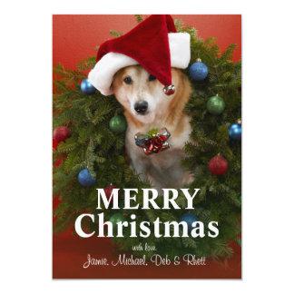クリスマスのリースに坐っている柴犬犬 カード