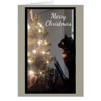 クリスマスの喜びの茶色のぶち猫のクリスマスカード カード