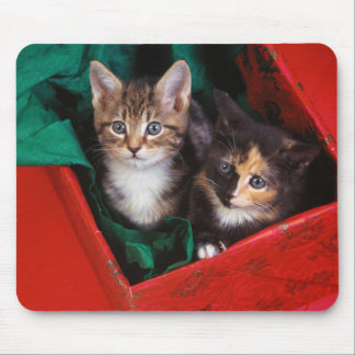 クリスマスの子ネコ マウスパッド