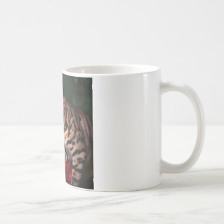 クリスマスの子猫の写真(ベンガル国内猫) コーヒーマグカップ