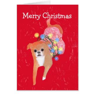 クリスマスの照明カードを持つ犬 カード