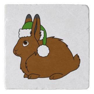 クリスマスの緑のサンタの帽子が付いているブラウンの北極ノウサギ トリベット