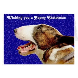 クリスマスの英国のブルテリア カード
