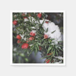 クリスマスの赤い果実および雪 スタンダードカクテルナプキン