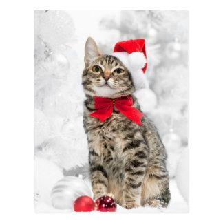 クリスマスの近くの赤いサンタの帽子のクリスマス猫 ポストカード