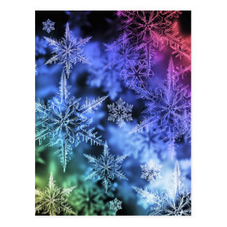 クリスマスの郵便はがき ポストカード