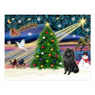 クリスマスの魔法のスキッパーキ ポストカード