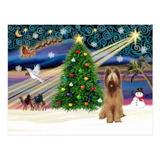 クリスマスの魔法Briard子鹿 ポストカード
