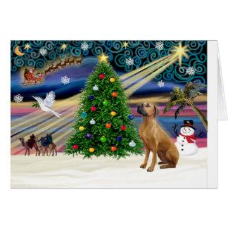 クリスマスの魔法Rhodesian Ridgeback-lkup カード