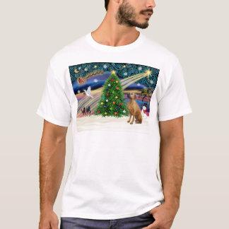 クリスマスの魔法Rhodesian Ridgeback-lkup Tシャツ