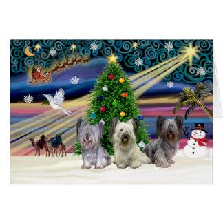 クリスマスの魔法SkyeTerrierTRIO カード